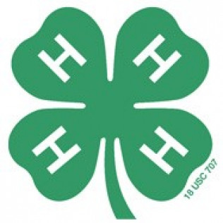 Canyon County 4-H